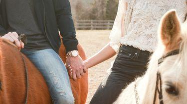datingsite voor paardenmensen