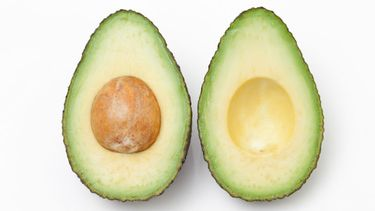 allergisch avocado