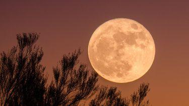 slecht slapen met volle maan