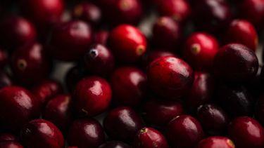 cranberry (antioxidantrijke producten)