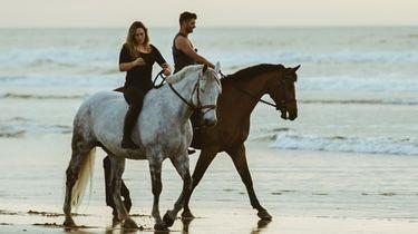 Paardenliefhebber