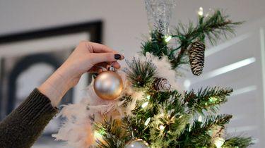 kerstboom als je huisdieren hebt